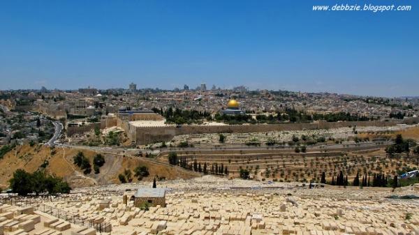 debbzie israel